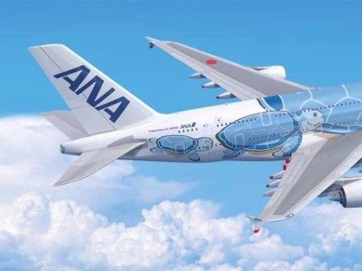 Ana A380 Tokio Honolulu Turtle 4 3