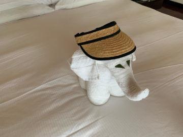 hilton seychelles labriz beach villa bett elefant