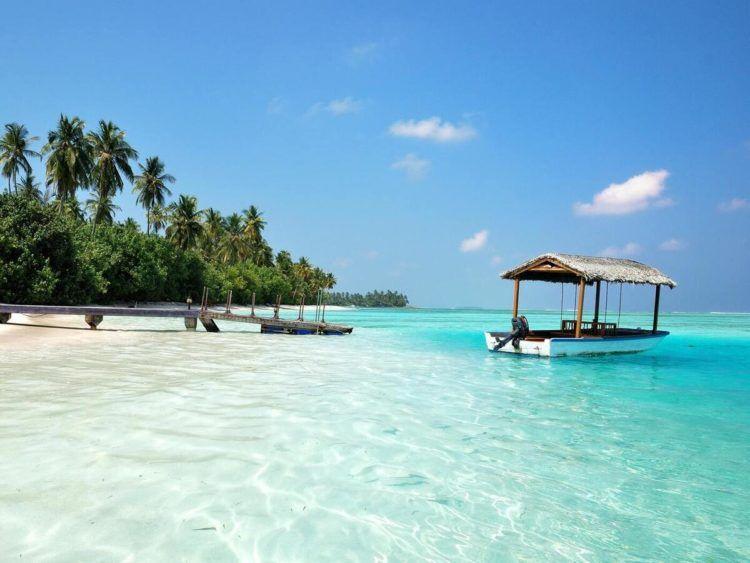 Medhufushi Island Resort Malediven Unsplash