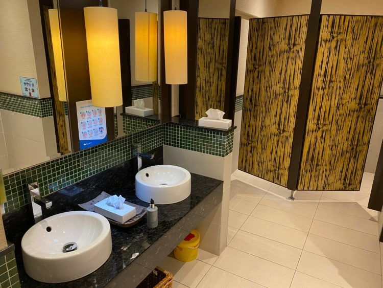 Air Seychelles Salon Vallee De Mai Premium Lounge Wc