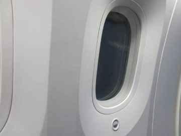 ana business class boeing 787 fenster 1