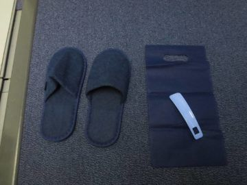 ana business class boeing 787 slipper