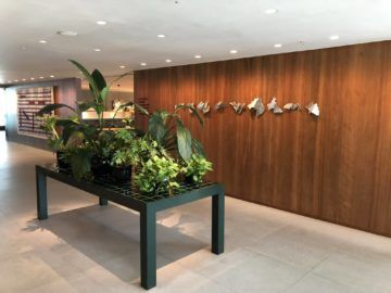 cathaypacific business class lounge the pier hongkong eingangsbereich
