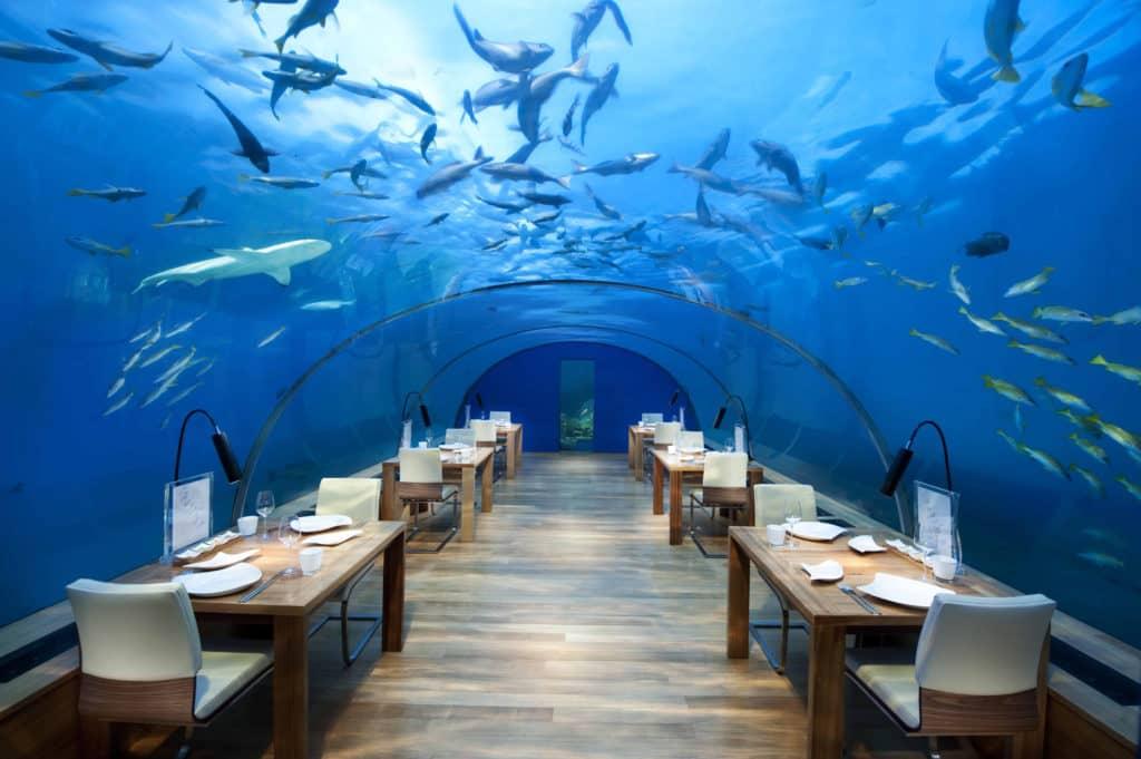 conrad maldives rangali ithaaundersearestaurant2 hr