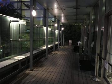 singapore krisflyer gold lounge terminal3 racuherbereich